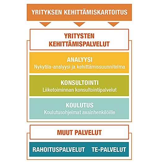 Yrityksen kehittämiskartoitus